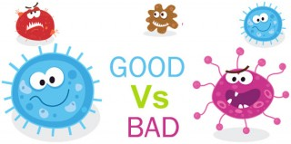 Good-Vs.-Bad-Bacteria